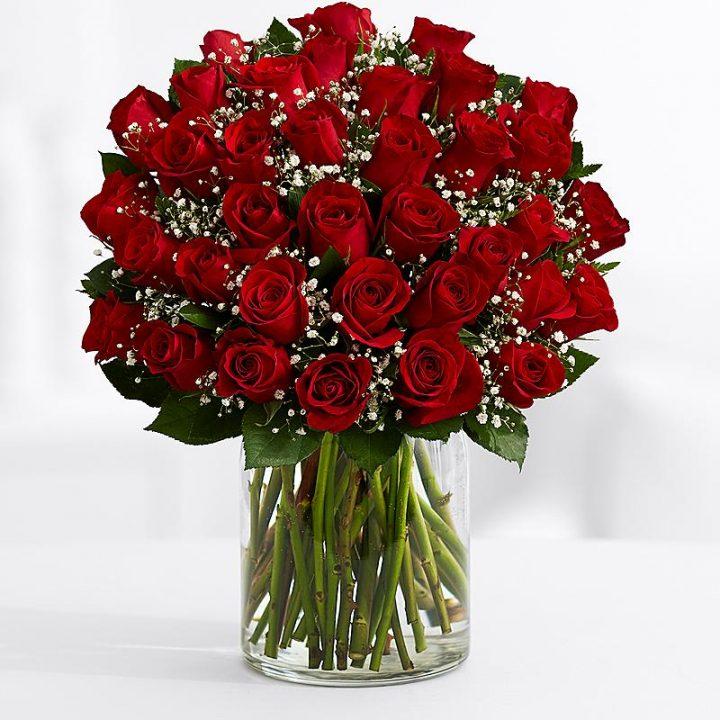 35 Длинных Красных Роз