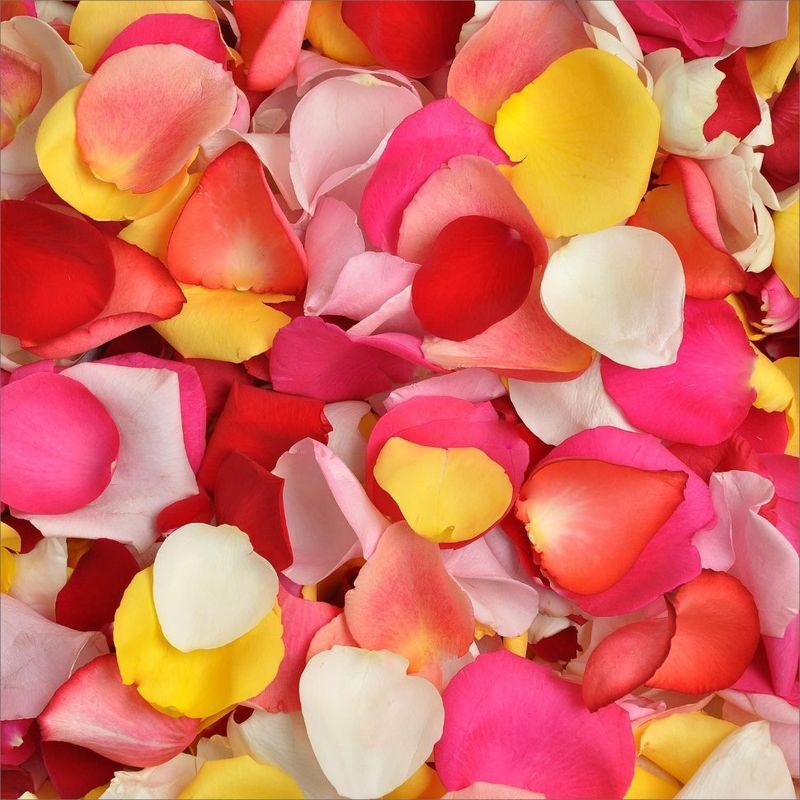 Лепестки роз Микс