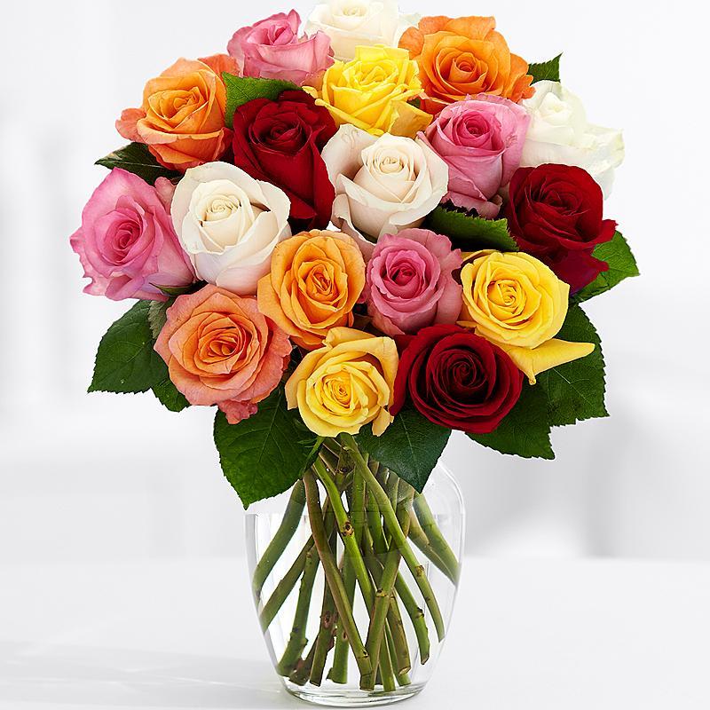 19 Разноцветных Роз
