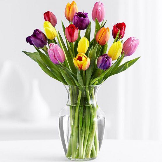 15 Разноцветных Тюльпанов