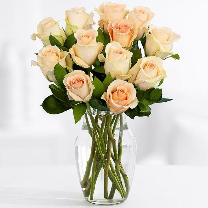 11 Длинных Персиковых Роз