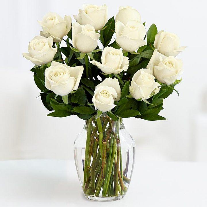 11 Длинных Белых Роз