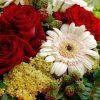Корпоративная Подписка на цветы Бизнес