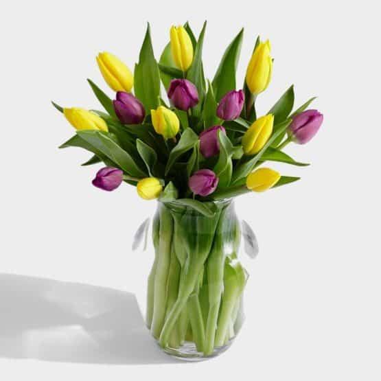 15 Королевских тюльпанов