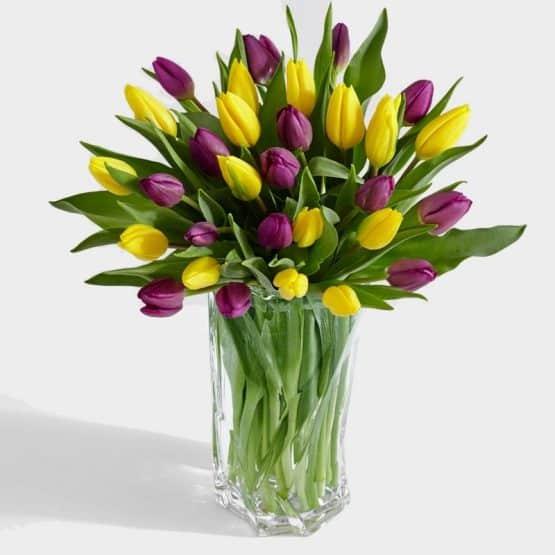 31 Королевский тюльпан